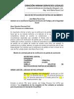 Modelo Demanda de Rectificación de Partida Nacimiento - Autor José María Pacori Cari