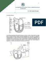 Guía de arritmias.pdf