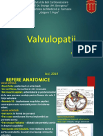 valvulopatii functional