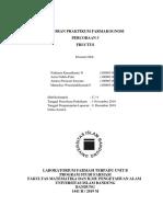 LAPORAN PRAKTIKUM FARMAKOGNOSI FRUCTUSs  FIX.docx