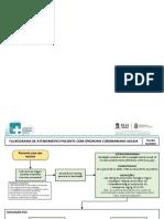 FLUXO dor torácica.pdf