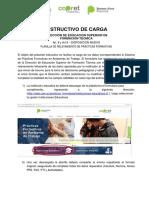 Anexo 2 - Instructivo de Carga_desft