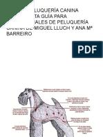 Guia_de_Peluqueria_Canina_LA_COMPLETA_GU.docx