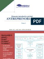 Tema 1 Antreprenoriat