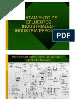 TRI - Industria Pesquera.pdf