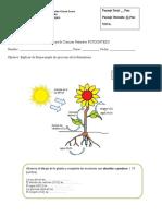 prueba de naturaleza 6 basico.doc