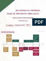 INPI Consulta Indígena Tren Maya, 16dic19
