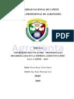 Informe Avance III.docx