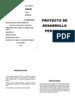 ultimo informe .. proyecto