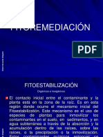 fitorremediacion