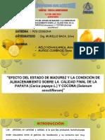 exposicion pos cosecha (2).pptx