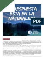 Fact Sheet Dia Mundial Del Agua La Respuesta Esta en La Naturaleza