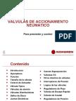 exposicion valvulas neumaticas 2010