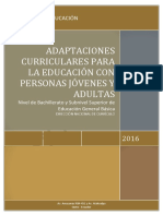 ADAPTACIONES-CURRICULARES-PCEI(1) (1)