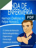 Demo Agenda de Enfermeria Herman Orellana M. y Felipe Novoa S