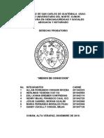 Elementos de Convicción 2.docx