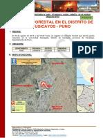 REPORTE-COMPLEMENTARIO-Nº-1680-07AGO2019-INCENDIO-FORESTAL-EN-EL-DISTRITO-DE-USICAYOS-PUNO01.pdf