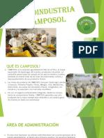 AGROINDUSTRIA CAMPOSOL PPT