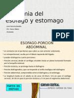 Anatomia del esofago y estomago.pptx
