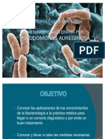 Pseumonas aureginosa 2