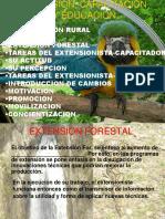 Extension Capacitacion y Educacion Forestal