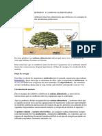 Ecosistemas y Cadenas Alimentarias