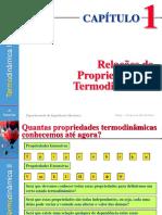 Capitulo_1_Relações_de_Propriedades_Termodinâmicas.pdf