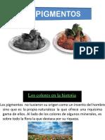 diapositiva_de_pigmentos[1]--__--