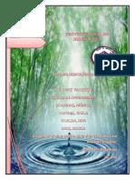 hidrologia final corregido.pdf