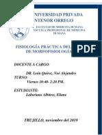 Informe Fisiología digestivo II