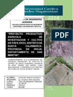 proyectoproductivoagricoladepapajhonatan-150528154504-lva1-app6891