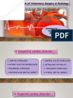 Cardiac disorder