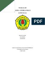 litium revisi.docx