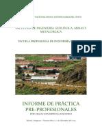 informe prácticas preprof FLEO