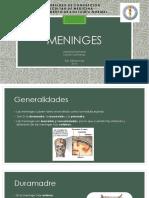 2.-Meninges.pptx