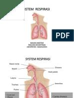 Anatomi Sistem Respirasi biom 2 -2018
