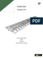Analysis_Report_Hector_Hidalgo_A81V_Perfil alar