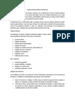 CHARLA PROYECCIÓN DE PARTÍCULAS