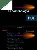 fenomenologia_1_14