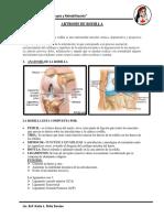 ARTROSIS DE RODILLA-3.docx