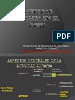 ACTIVIDAD AGRARIA EN EL PERU.pdf