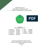 contoh laporan PKL kebidanan