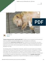 REMEDIOS caseros para el PARVOVIRUS canino - ¡EFECTIVOS!.pdf
