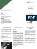 Pharyngeal Pouch Leaflet