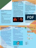 Leaflet Epilepsi