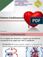 Anatomía Humana Introductorio Cardiovascular.pptx