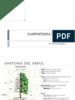 Curso de Carpinteria tema 1 a 5.pdf