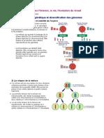 Brassage Génétique Et Diversification Des Génomes