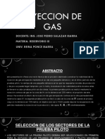 INYECCION DE GAS-REINA.pptx