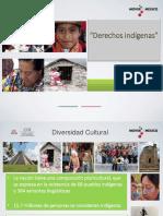 Derechos-indigenas.pdf